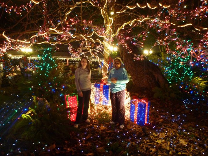 Portland Christmas Light Tours With Portland Limos And JMI