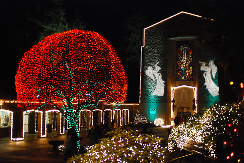 the grotto christmas festival of lights