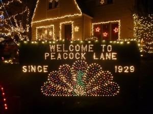 Peacock Lane Portland Christmas Lights
