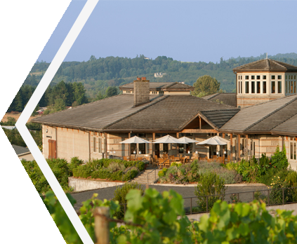 Adelsheim Vineyards - Oregon Wine Country Founders Tour From JMI Limousine